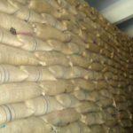 লাকসাম খাদ্যগুদামের ১০ কোটি টাকার খাদ্যশস্য আত্নসাৎ