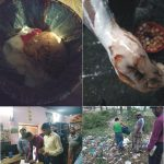 কুমিল্লায় পঁচা ডিম ও পোড়া তেলে তৈরী হচ্ছে খাদ্য ! বিভিন্ন প্রতিষ্ঠানে জরিমানা
